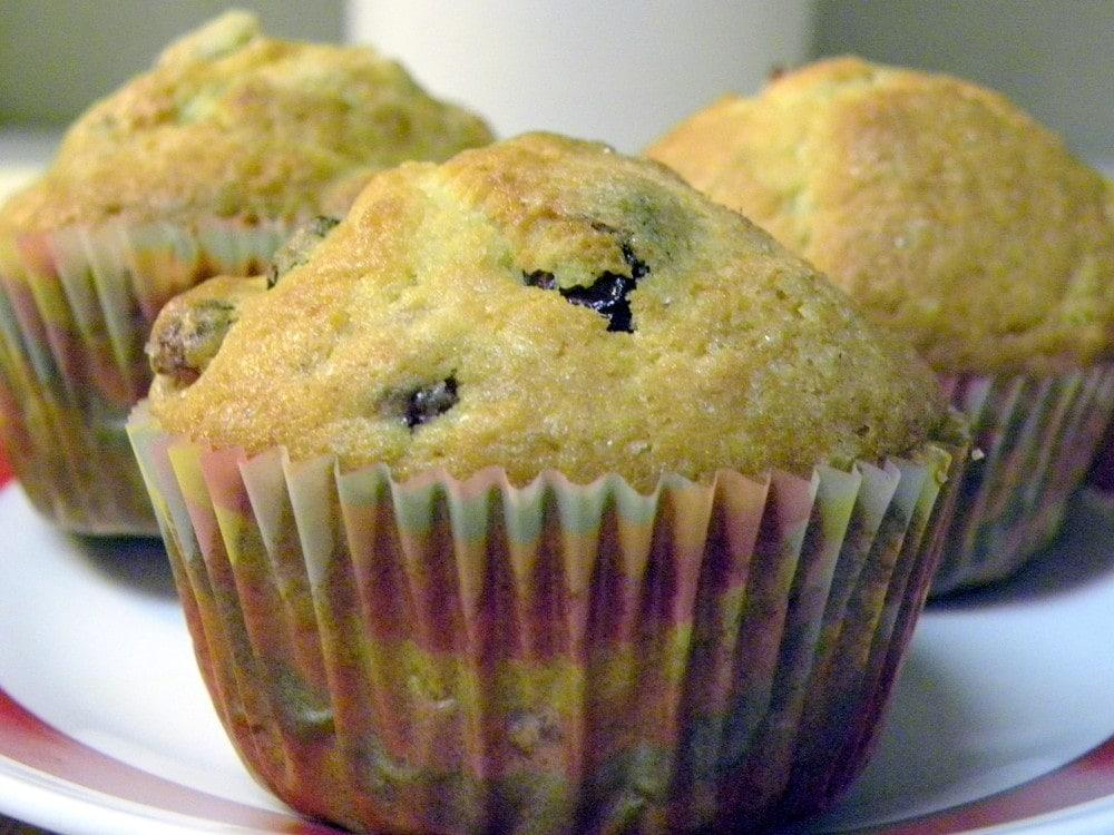 Orange Cranberry Muffins — A Few Shortcuts