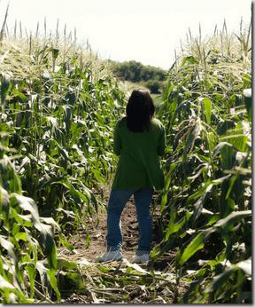 me in corn