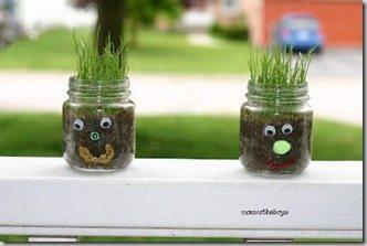 grass cups