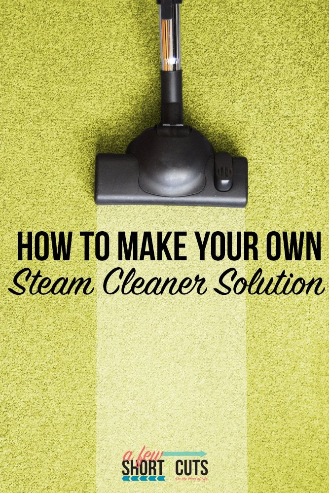 Carpet Steam Cleaner Solution 28 Images What Is The