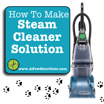How To Make Your Own Steam Cleaner Solution A Few Shortcuts