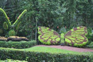 Busch Gardens-101