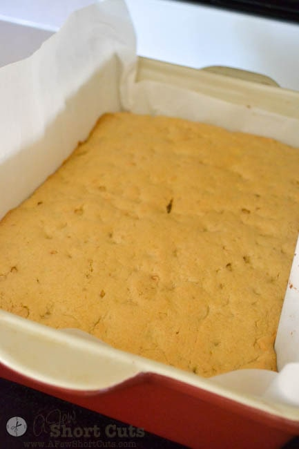 Peanut Butter Fudge Blondies-5