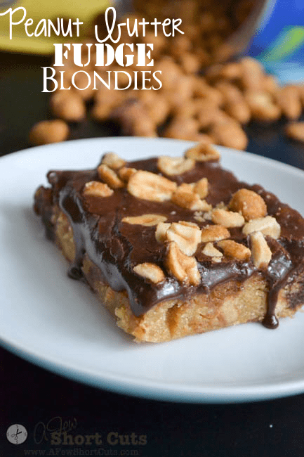 Sweet and Salty come together for the ultimate dessert recipe! Try this amazing Peanut Butter Fudge Blondies Recipe.