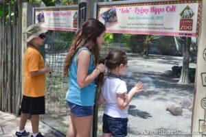 Lowry Park Zoo Tampa FL-12