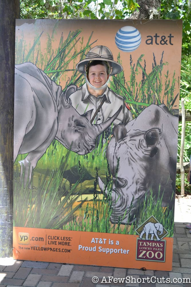 Lowry Park Zoo Tampa FL-15