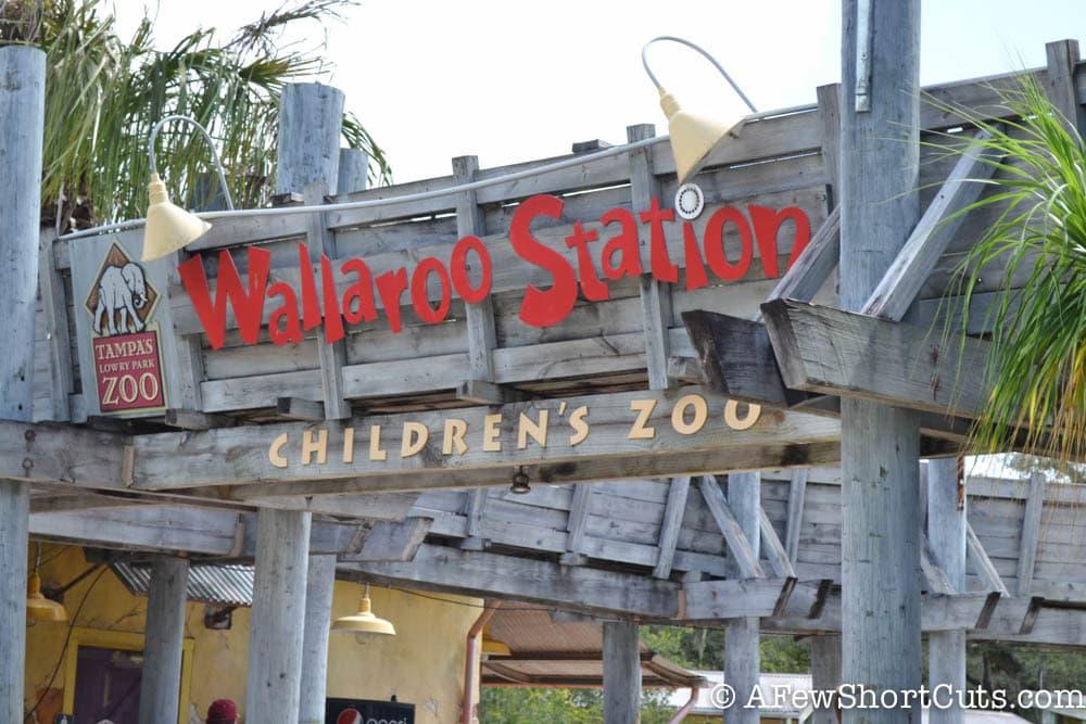 Lowry Park Zoo Tampa FL-4