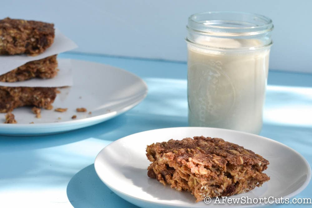 Cinnamon Raisin Oatmeal Squares-3