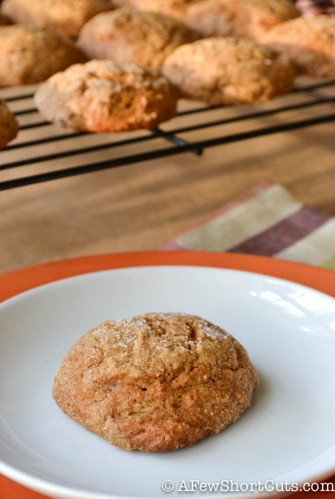 Pumpkin Ginger Snaps-1-3