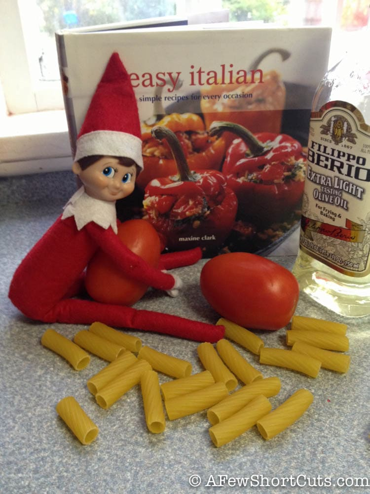 elf on the shelf-1-4