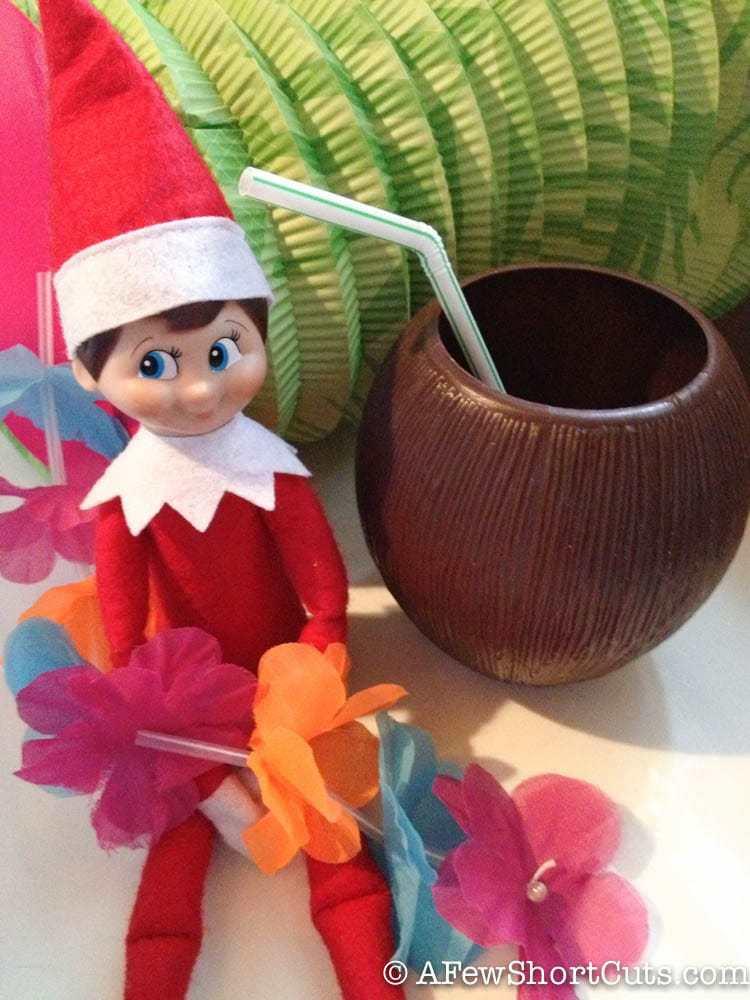 elf on the shelf-7