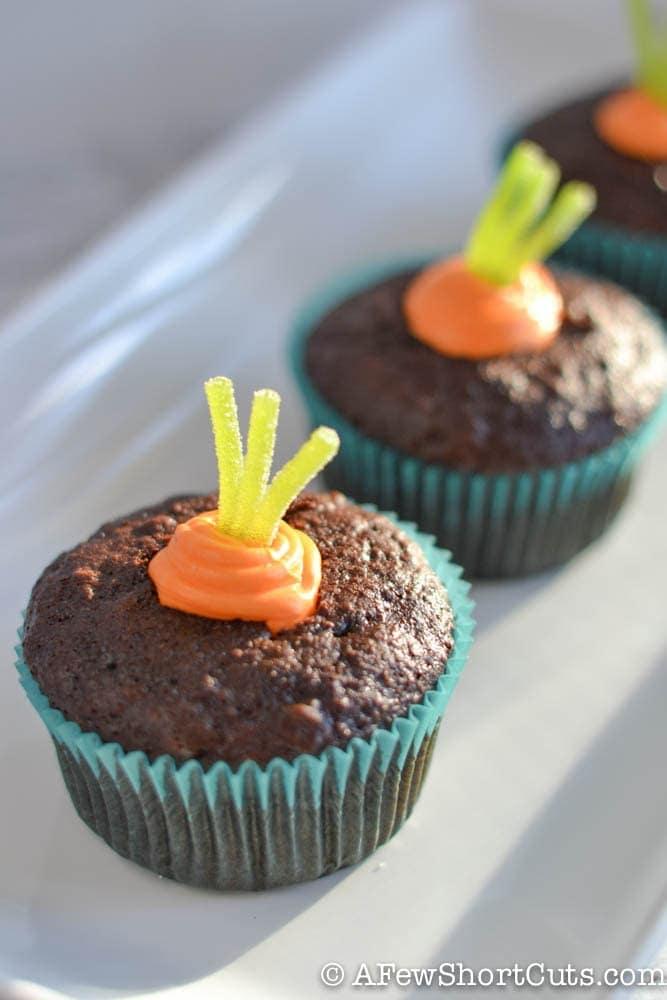 Simple Spring Garden Cupcakes-1-6