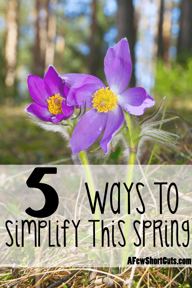Spring signifies freshness and being reborn. Learn how to let things go and check out these 5 ways to simplify your life this spring.