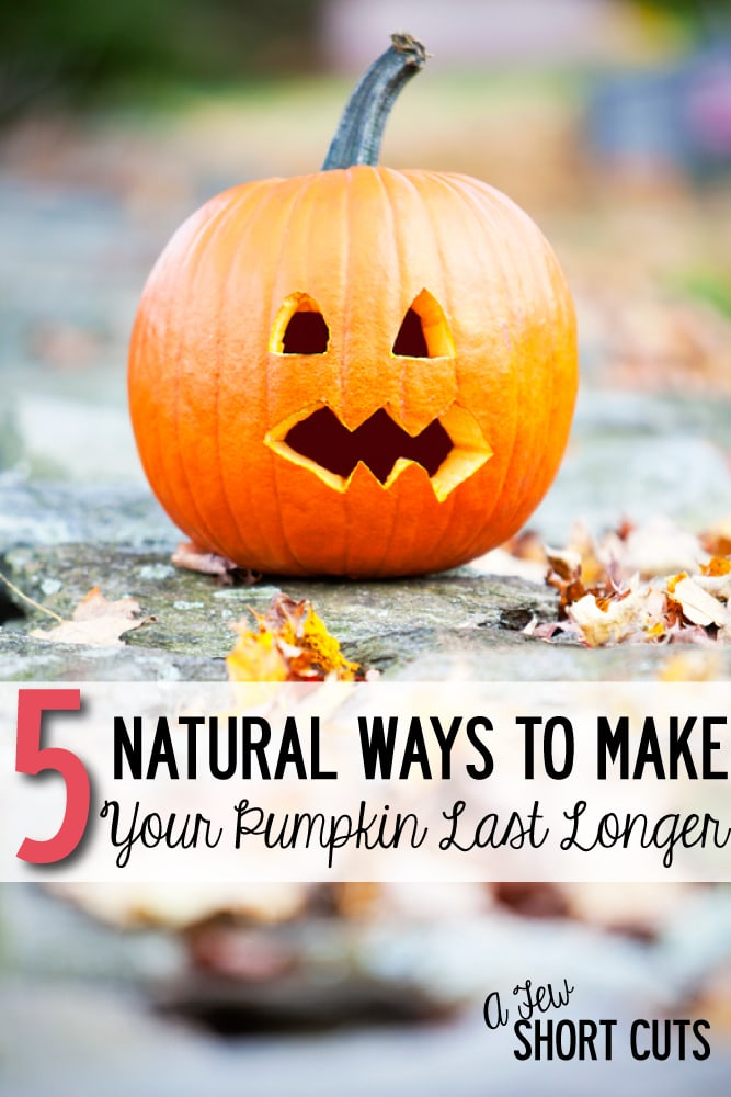 Don't let your pumpkin rot before Halloween! Learn these 5 Natural Ways To Make Your Pumpkin Last Longer!