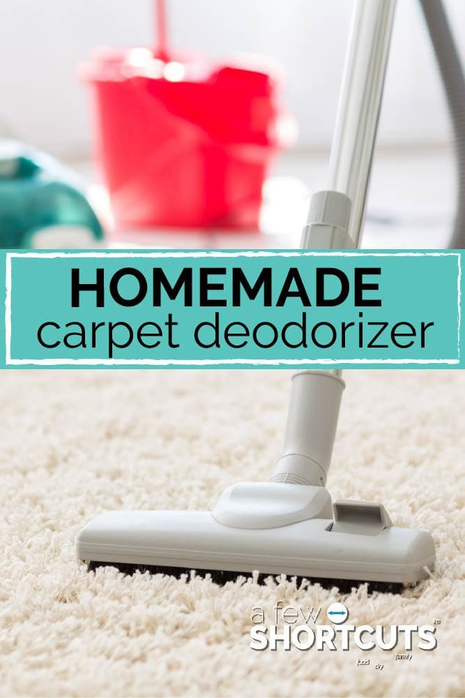 Freshen up your house in a snap with this simple Homemade Carpet Deodorizer Recipe! Great to keep on hand all of the time!