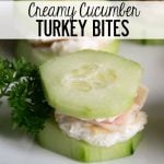 Creamy-Cucumber-Turkey-Bites