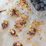 Chocolate Blueberry Pecan Bites-6