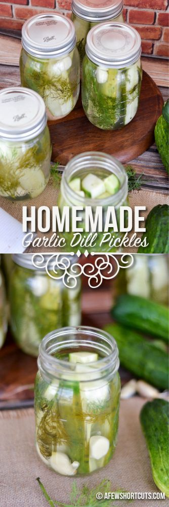 Homemade Garlic Dill Pickles — A Few Short Cuts