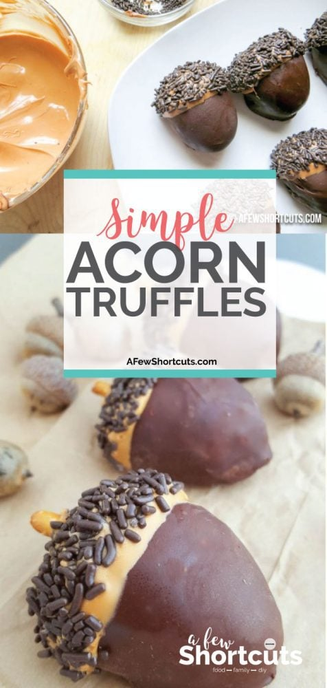 Incredibly adorable fall treat! Go now to get the recipe & instructions to make these Simple Acorn Truffles. So perfect to celebrate the arrival of Autumn!