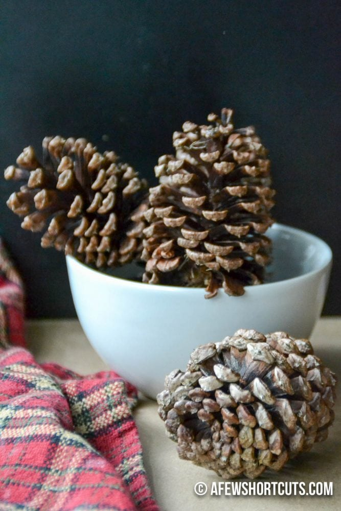 Help your house smell like the holidays and make these quick and easy DIY Cinnamon Scented Pinecones! They are so easy to make with essential oils!