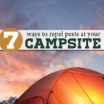 7-ways-to-repel-pests-at-your-campsite