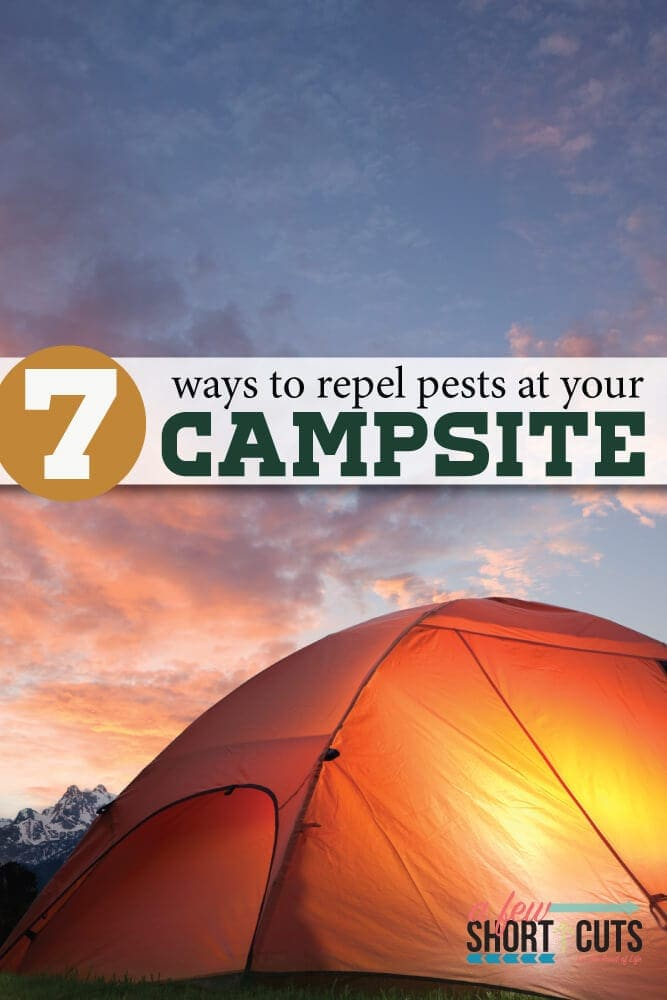 Give these 7 tips for a pest free campsite a try and see how simple it can be to protect your space. Quick tips to repel pests at your campsite.