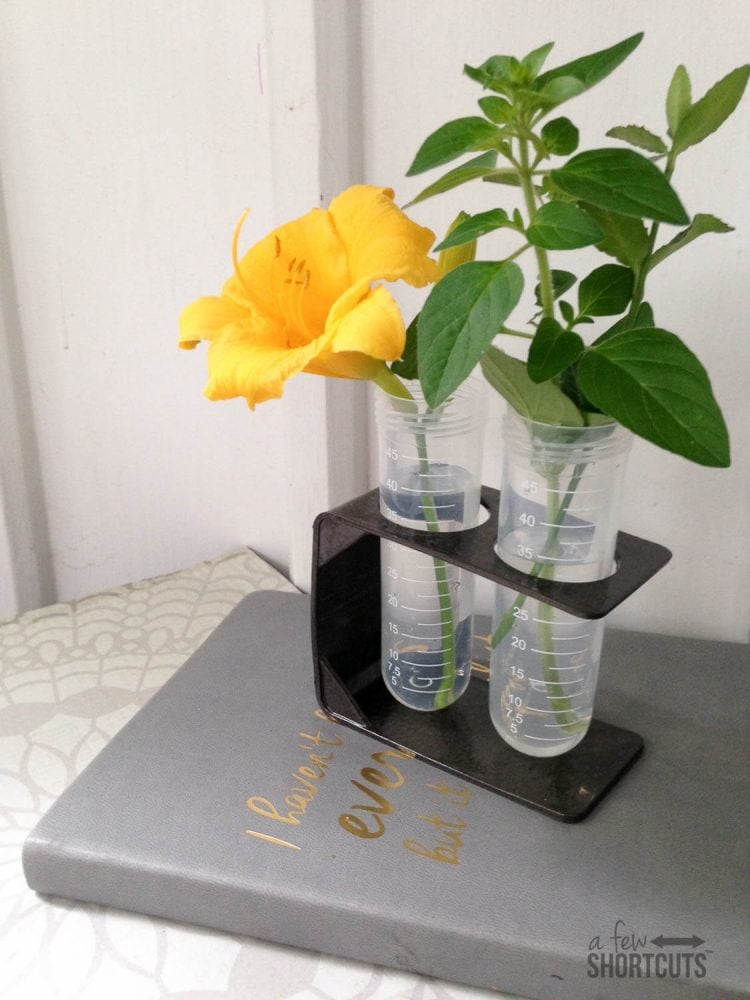 Get the look for less! DIY Test Tube Vase for under $5 compared to $30 online! Decorate your house on a budget!