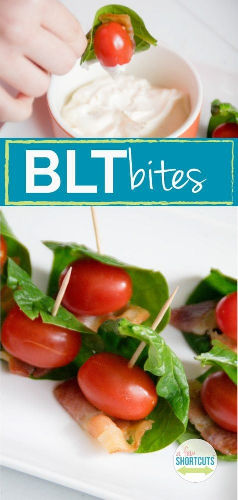 Looking for an appetizer that is going to fly off of the plate! Check out this yummy BLT Bites with Tangy Mayo Dip Recipe!