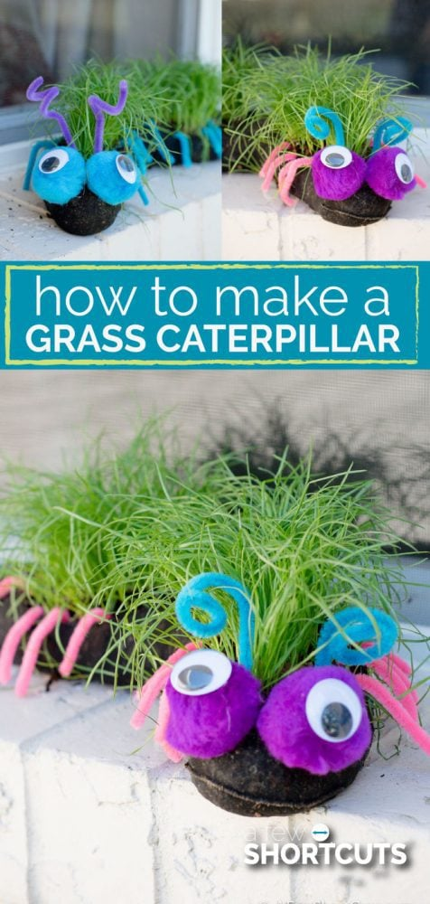 A fun family Spring or Summer DIY Project. Learn how to make a grass caterpillar for your garden. Kids love to watch them grow and create them!
