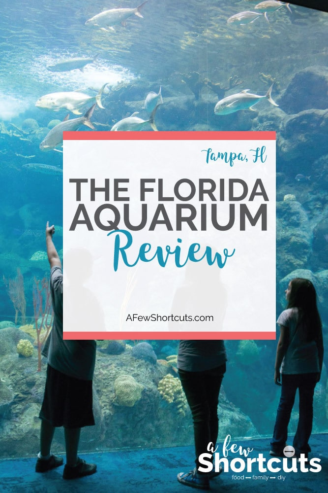 The Top 20 Must See Places In Florida Wanderwisdom 8