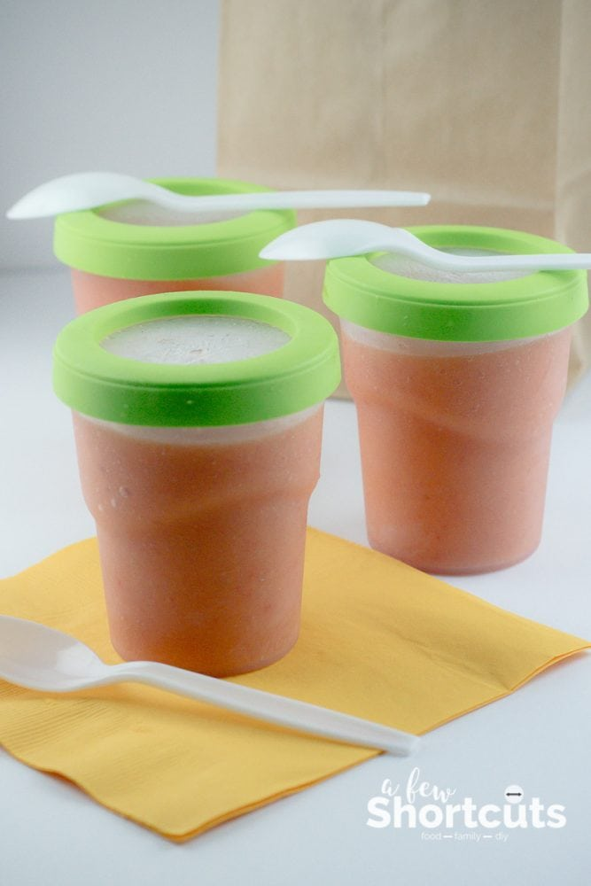 Learn How to Pack Lunch Box Smoothies & enjoy more than one purpose for these delicious treats. A super way to add a nutritious snack to those lunch bags.