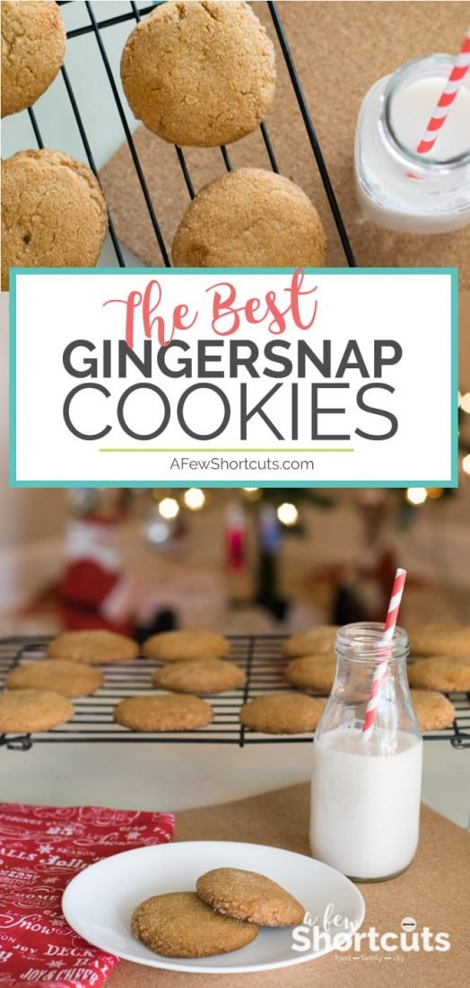 It isn't Christmas without a plate of the Best Gingersnap Cookies! Get the recipe for this holiday classic cookie. Gluten-free and dairy-free versions too!