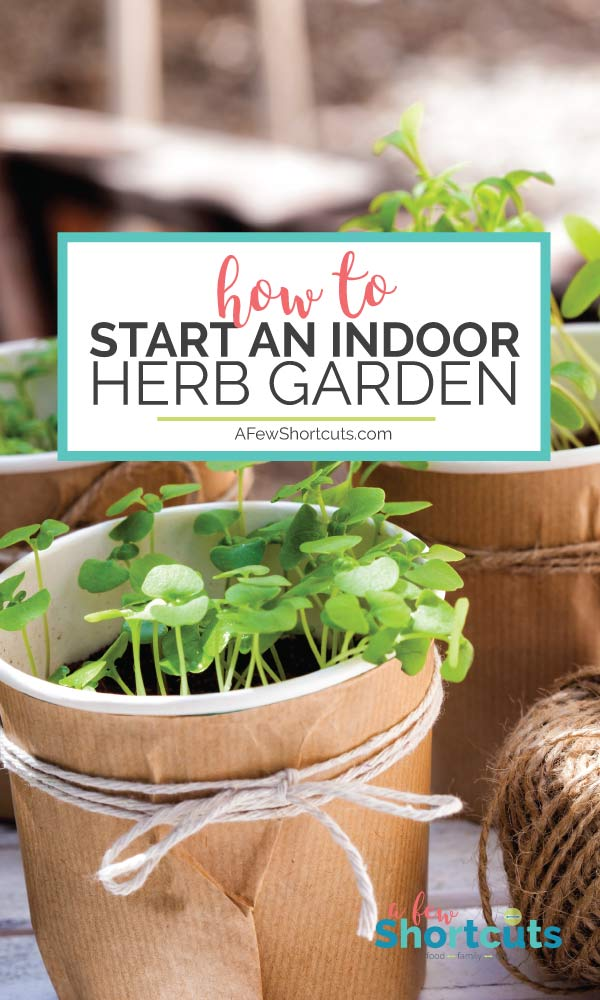 starting an indoor herb garden is so easy and has so many benefits it is a - How To Start An Herb Garden