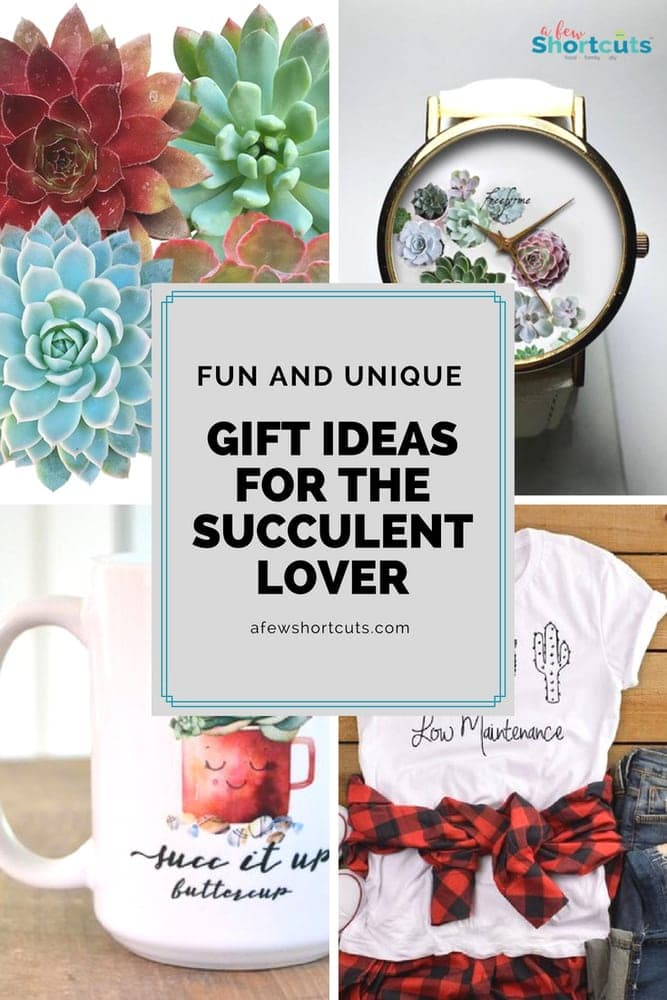 Think outside the box with these fun and unique gift ideas for the succulent lover in your life. So many great ideas that they are sure to love.