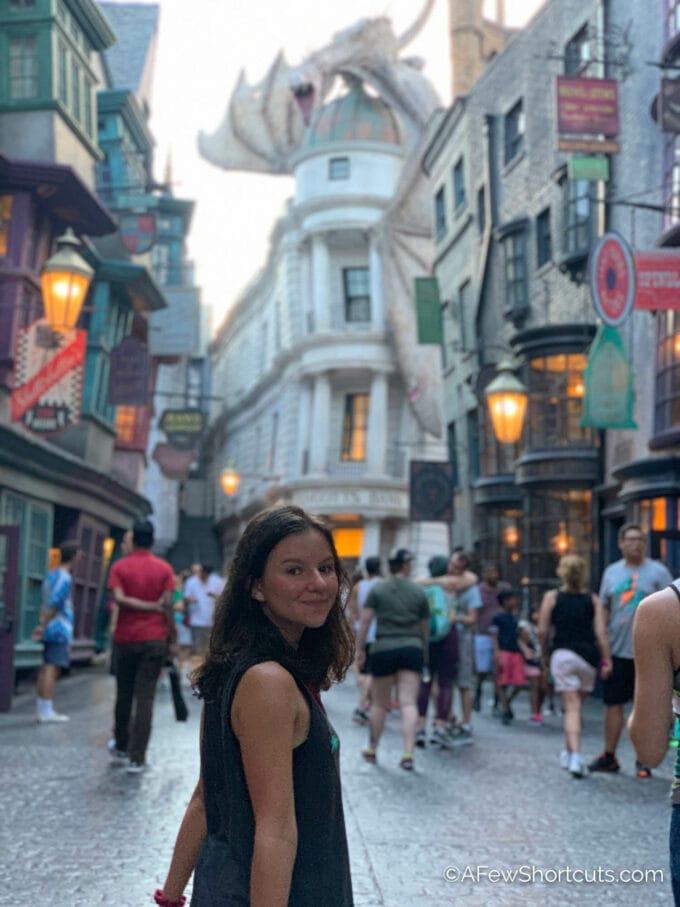 Diagon Alley with dragon