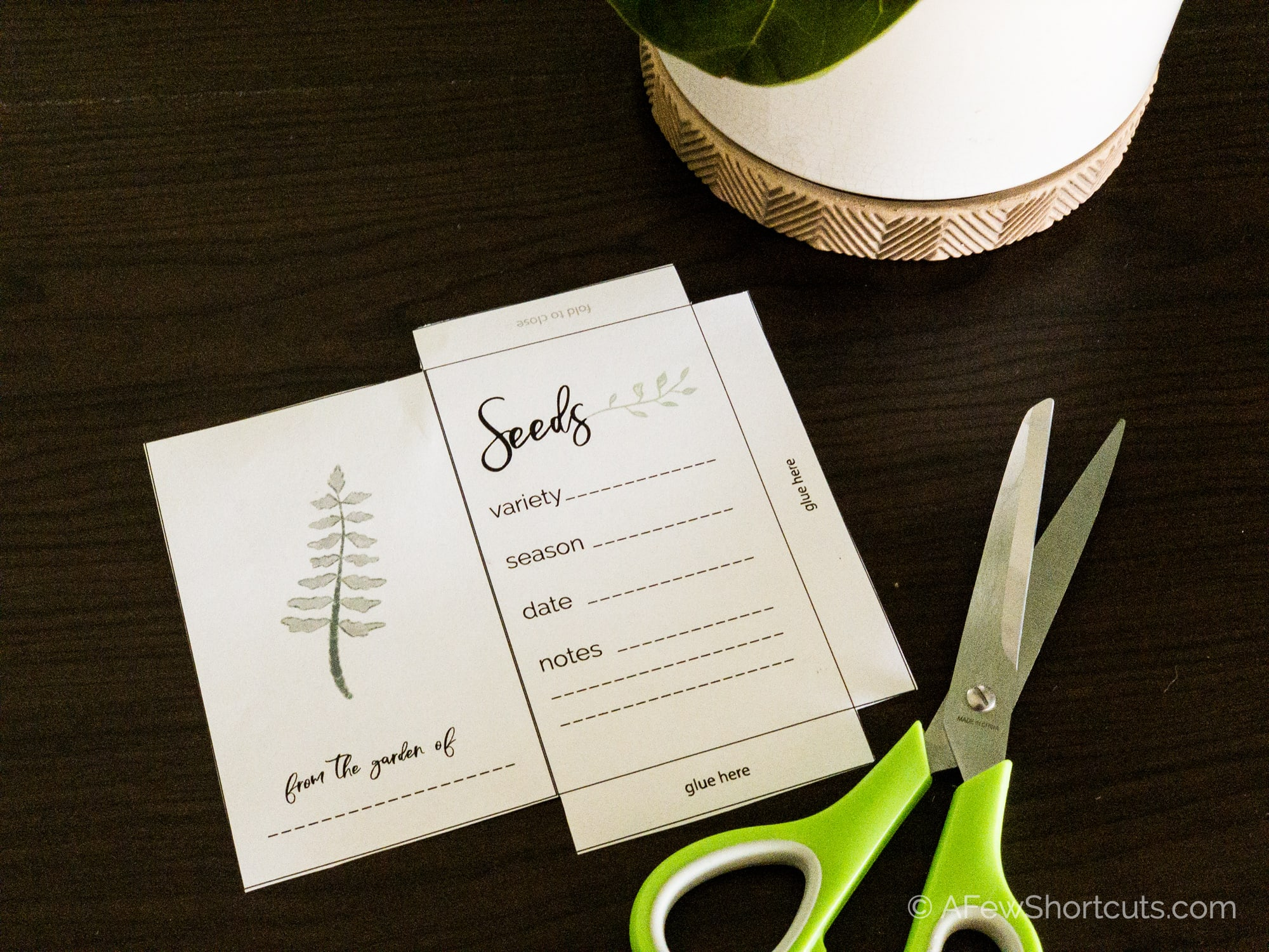 cut out seed packet template and scissors